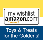 Shop_Amazon_Wish_List-180x170